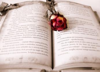 book-419589_640.jpg